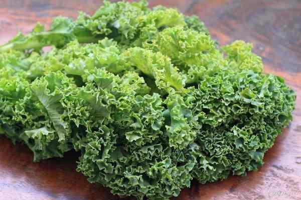 Cải xoăn là loại rau cực kì bổ dưỡng.