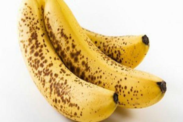 Chuối tiêu giúp ích rất tốt cho hệ tiêu hóa.